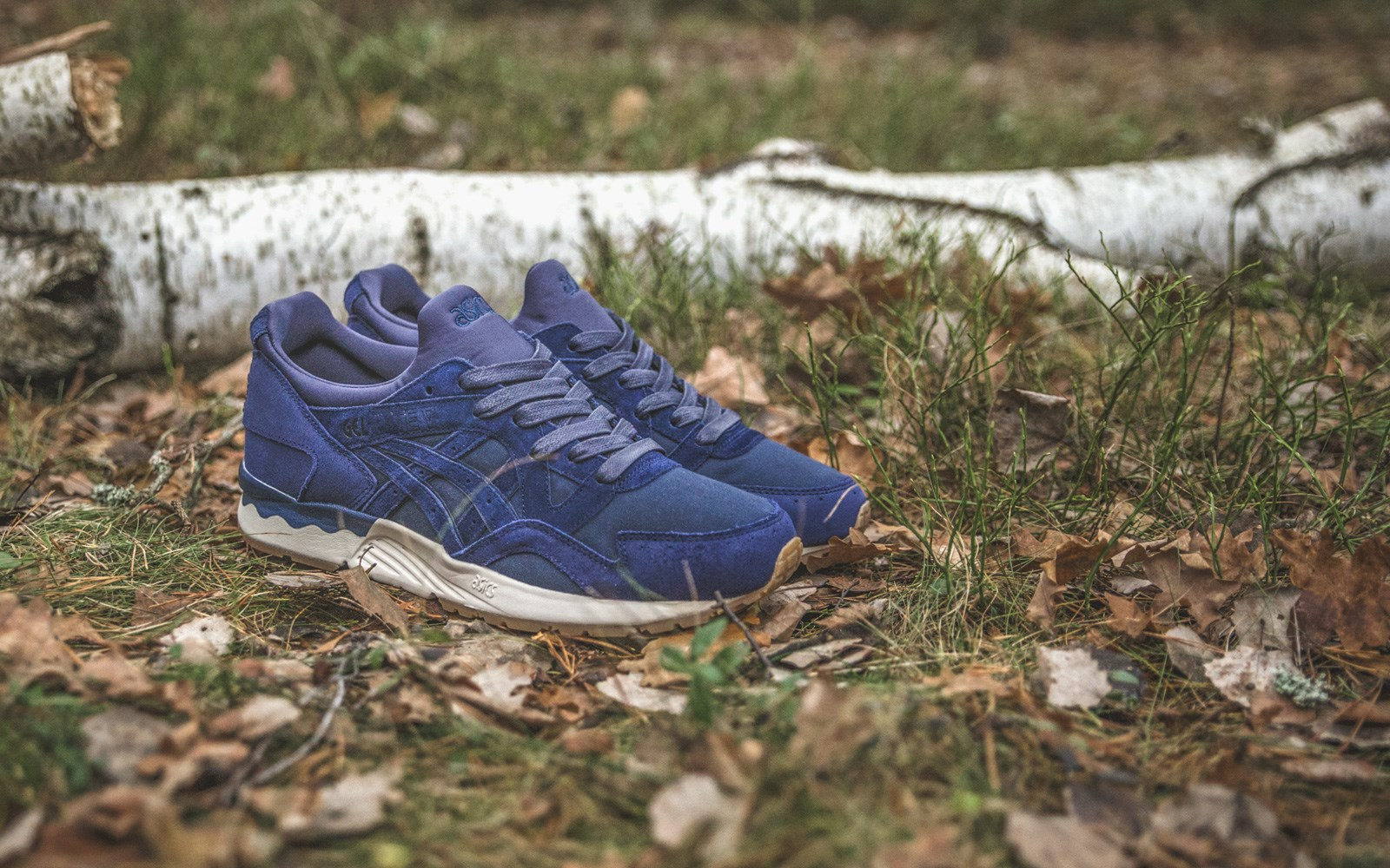 Sneakersnstuff x Asics Gel Lyte V Forest Pack