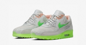 Nike Air Max 90 New Species CQ0786-001