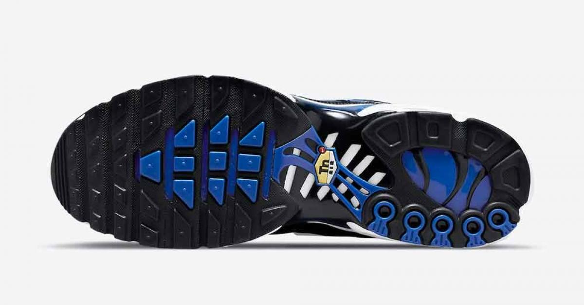 Nike Air Max Plus Black Royal DM8331-001